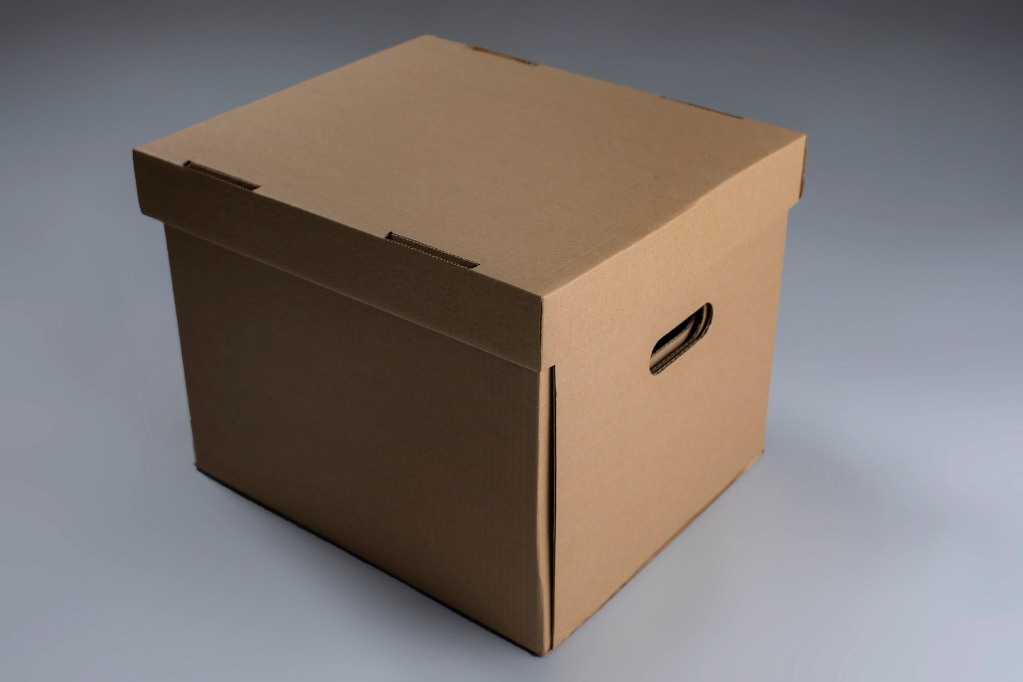 გადასაზიდი მუყაოს ყუთები